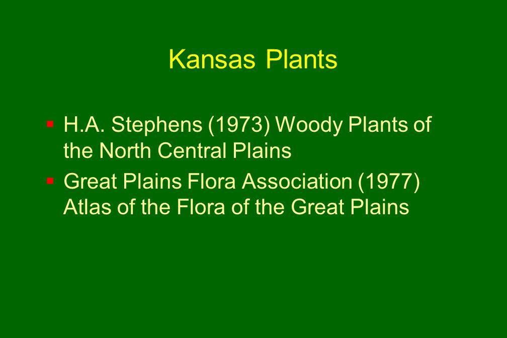 Kansas Plants  H.A.