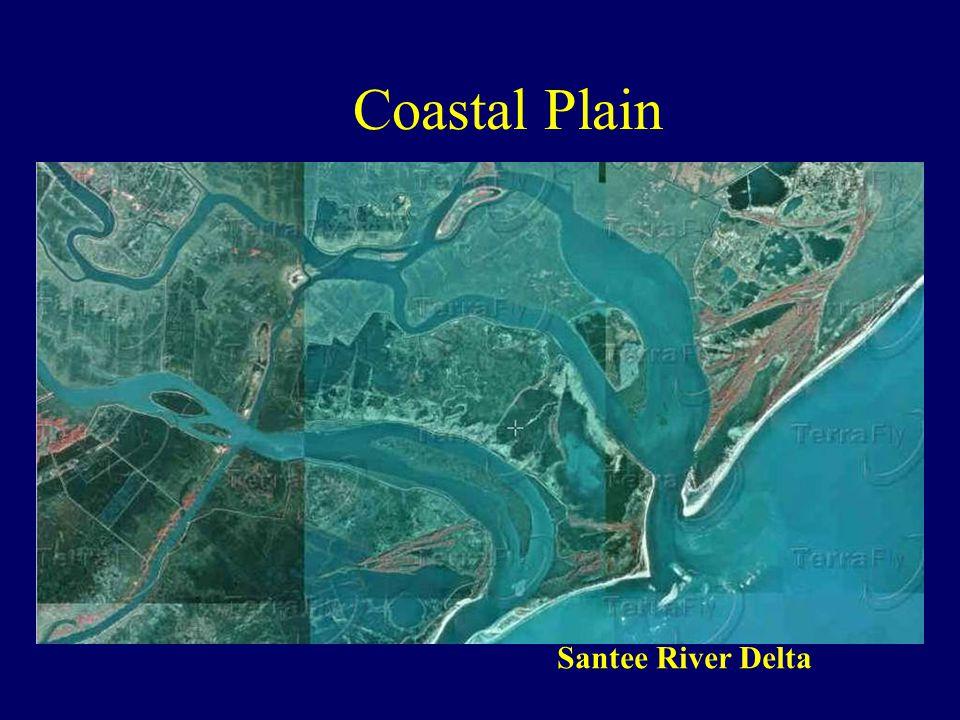 Coastal Plain Santee River Delta