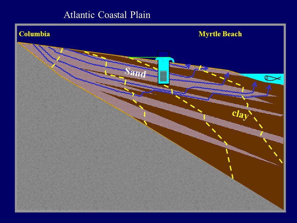clay Sand Columbia Myrtle Beach Atlantic Coastal Plain