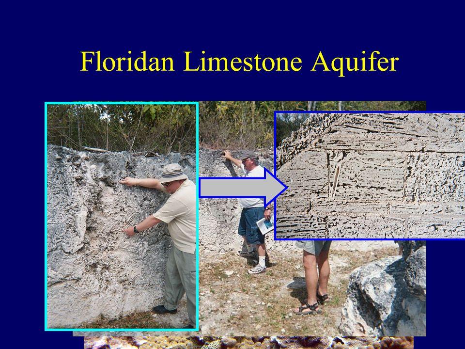 Floridan Limestone Aquifer