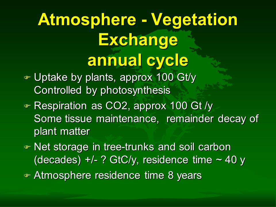 Atmosphere - Vegetation Exchange annual cycle F Uptake by plants, approx 100 Gt/y Controlled by photosynthesis F Respiration as CO2, approx 100 Gt /y Some tissue maintenance, remainder decay of plant matter F Net storage in tree-trunks and soil carbon (decades) +/- .