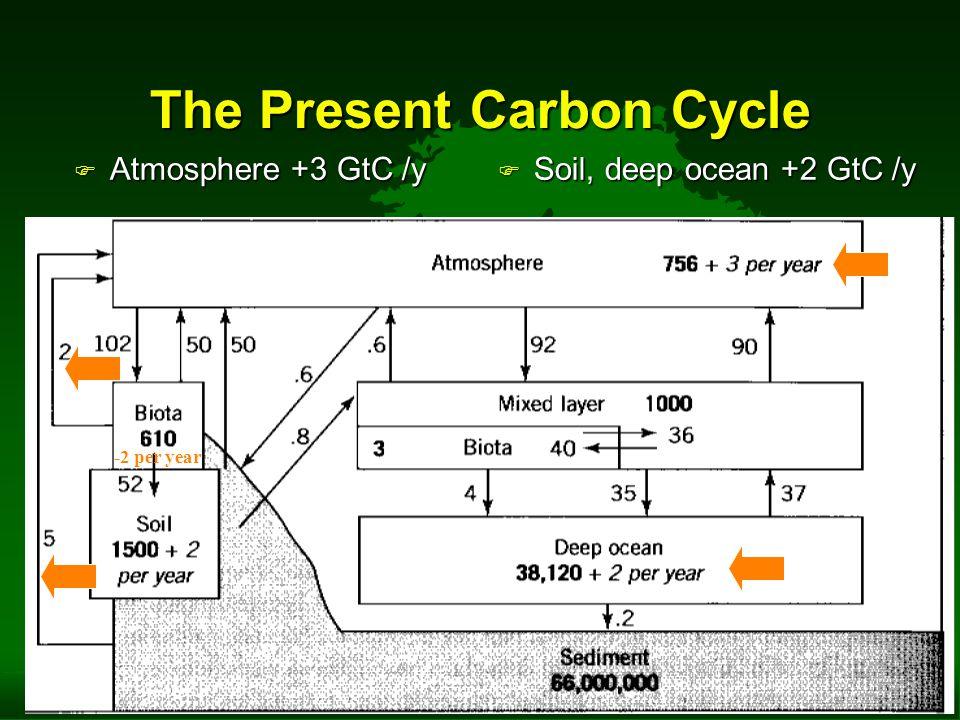 The Present Carbon Cycle F Atmosphere +3 GtC /y F Soil, deep ocean +2 GtC /y -2 per year