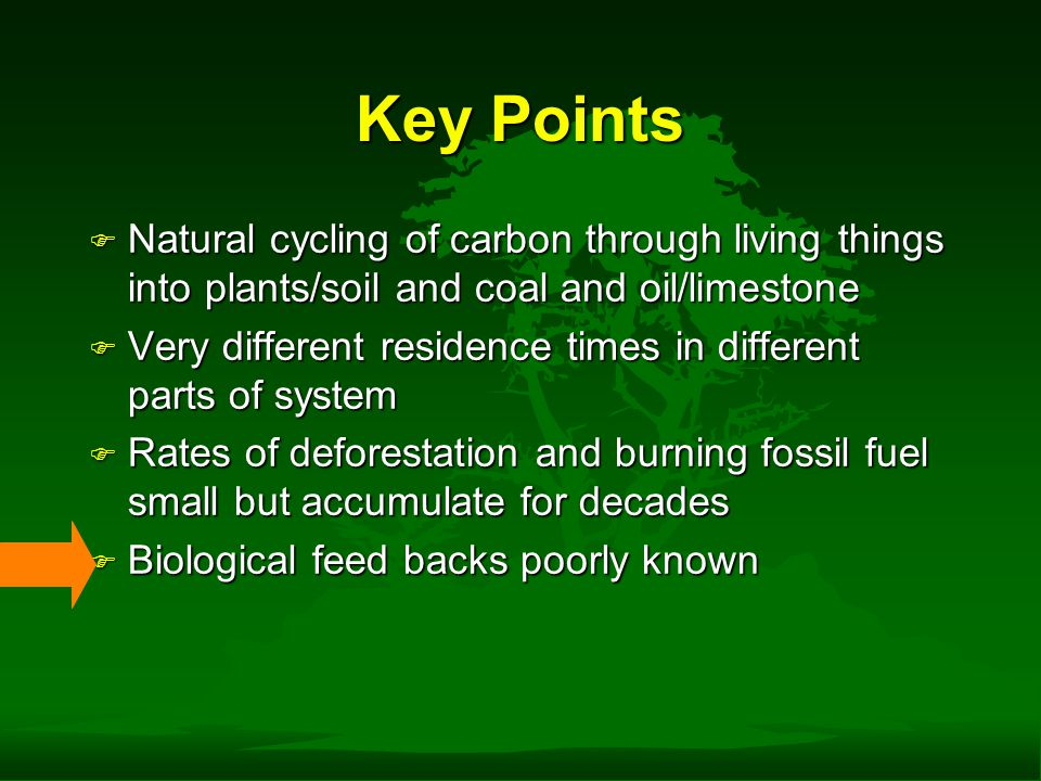 Key Points F Natural cycling of carbon through living things into plants/soil and coal and oil/limestone F Very different residence times in different parts of system F Rates of deforestation and burning fossil fuel small but accumulate for decades F Biological feed backs poorly known