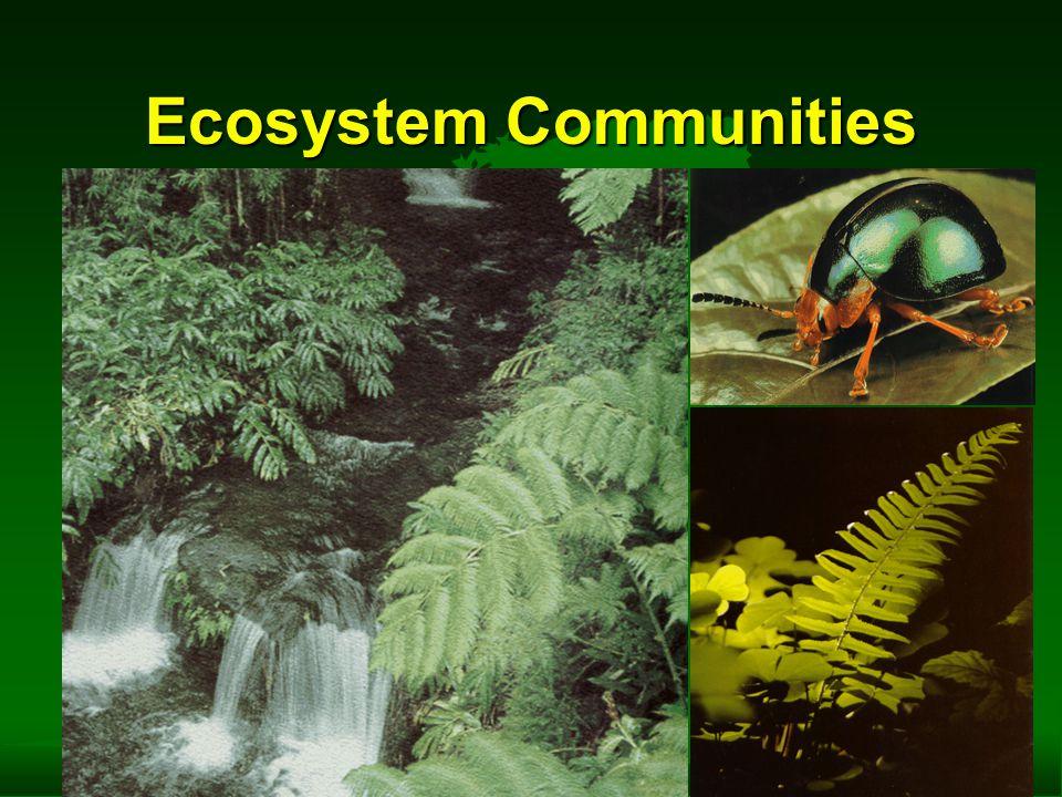 Ecosystem Communities