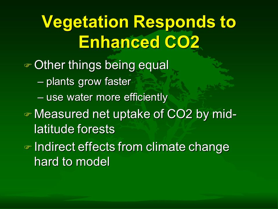 Vegetation Responds to Enhanced CO2 F Other things being equal –plants grow faster –use water more efficiently F Measured net uptake of CO2 by mid- la