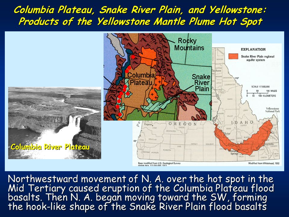 Columbia Plateau, Snake River Plain, and Yellowstone: Products of the Yellowstone Mantle Plume Hot Spot Columbia River Plateau Northwestward movement of N.