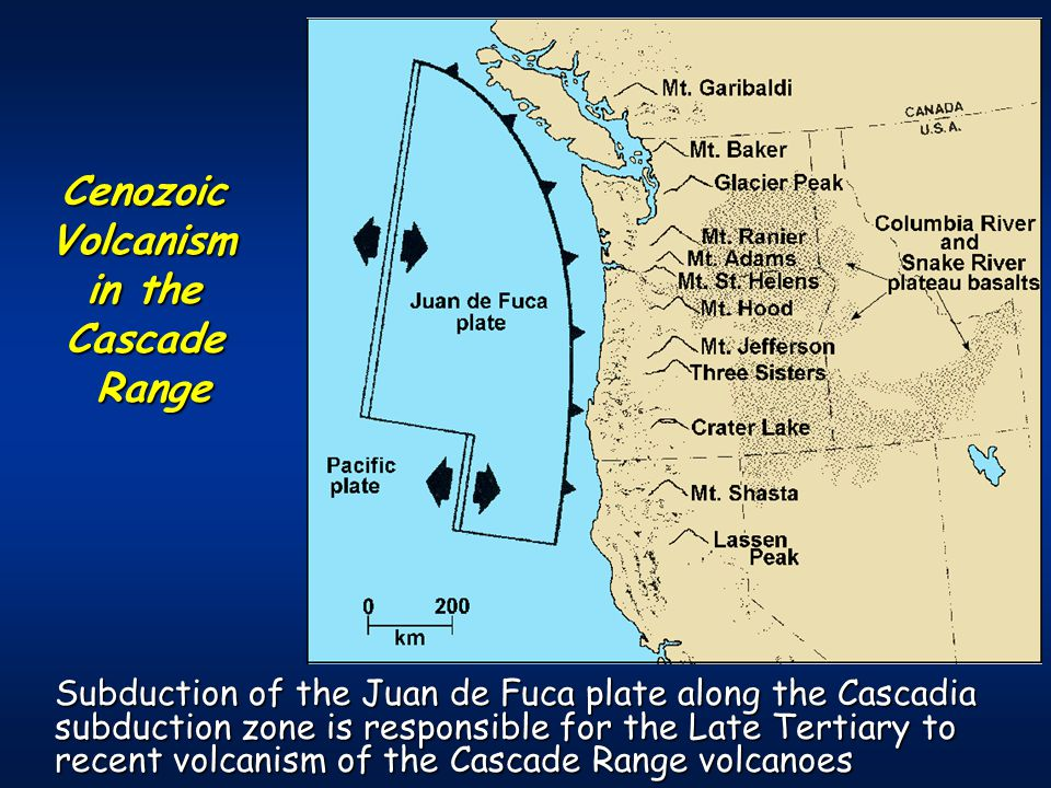 Subduction of the Juan de Fuca plate along the Cascadia subduction zone is responsible for the Late Tertiary to recent volcanism of the Cascade Range volcanoes CenozoicVolcanism in the CascadeRange