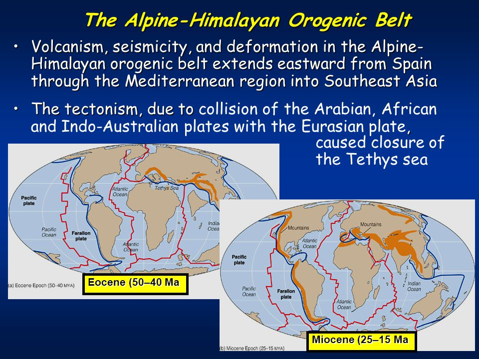 Volcanism, seismicity, and deformation in the Alpine- Himalayan orogenic belt extends eastward from Spain through the Mediterranean region into Southeast AsiaVolcanism, seismicity, and deformation in the Alpine- Himalayan orogenic belt extends eastward from Spain through the Mediterranean region into Southeast Asia The tectonism, due to,The tectonism, due to collision of the Arabian, African and Indo-Australian plates with the Eurasian plate, The Alpine-Himalayan Orogenic Belt Eocene (50–40 Ma Miocene (25–15 Ma caused closure of the Tethys sea