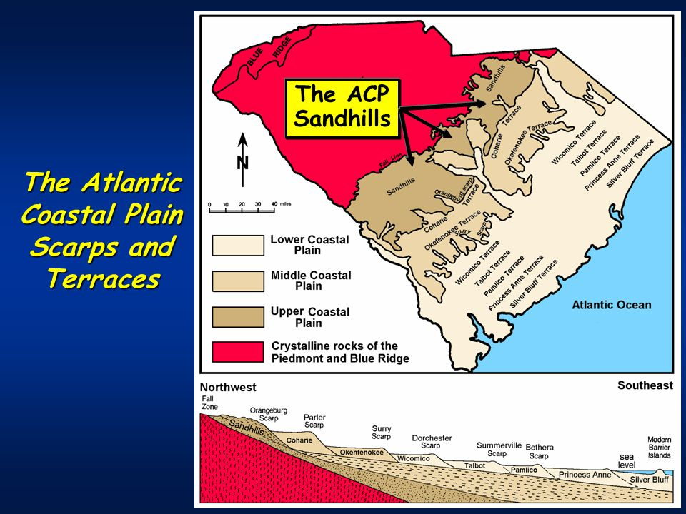The Atlantic Coastal Plain Scarps and Terraces The ACP Sandhills