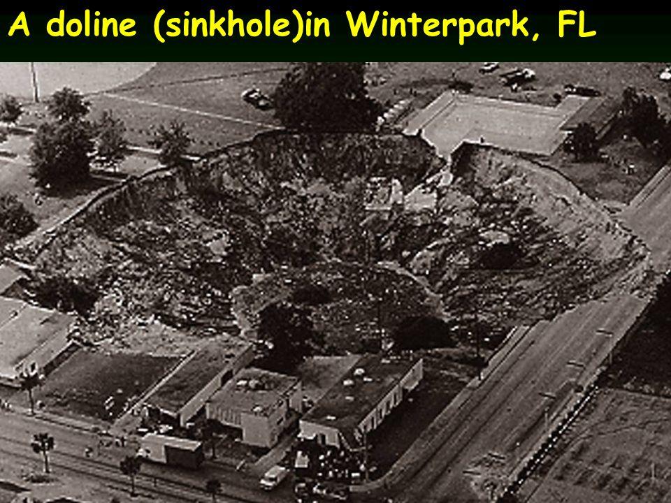 A doline (sinkhole)in Winterpark, FL