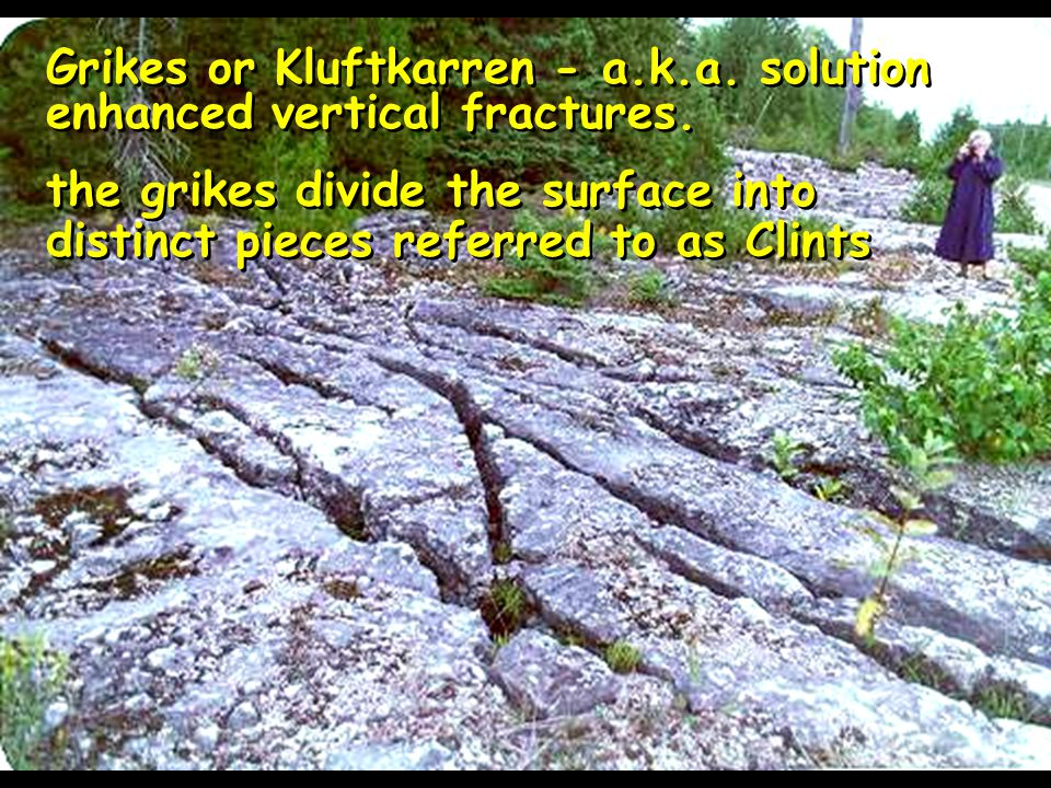 Grikes or Kluftkarren - a.k.a. solution enhanced vertical fractures.