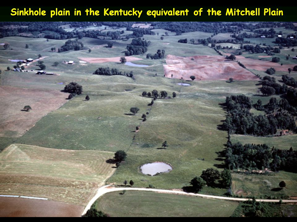 Sinkhole plain in the Kentucky equivalent of the Mitchell Plain