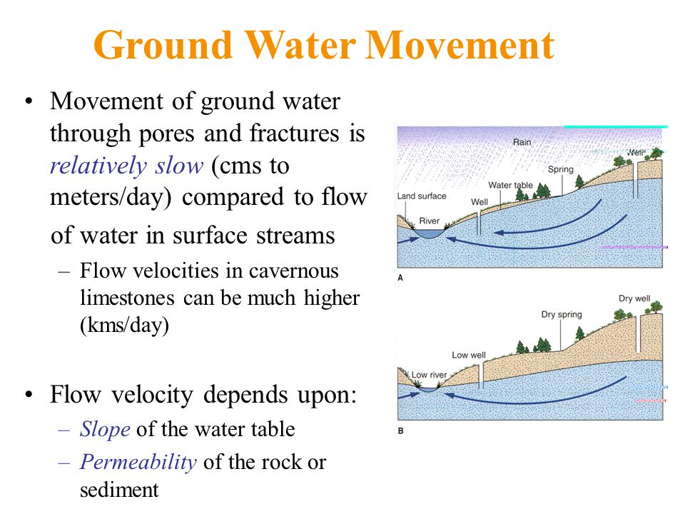 Movement of ground water through pores and fractures is relatively slow (cms to meters/day) compared to flow of water in surface streams –Flow velocities in cavernous limestones can be much higher (kms/day) Flow velocity depends upon: –Slope of the water table –Permeability of the rock or sediment Ground Water Movement