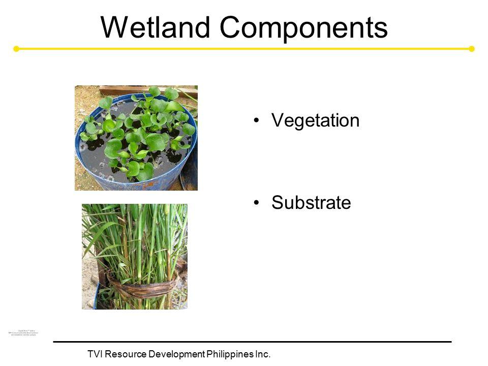TVI Resource Development Philippines Inc. Wetland Components Vegetation Substrate