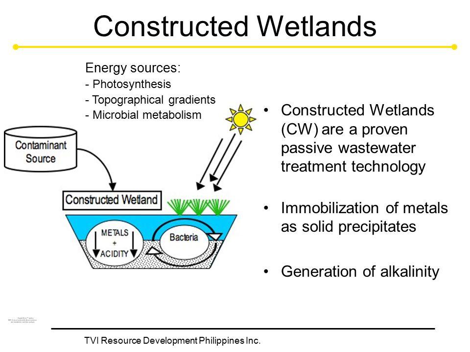 TVI Resource Development Philippines Inc. Constructed Wetlands Constructed Wetlands (CW) are a proven passive wastewater treatment technology Immobili