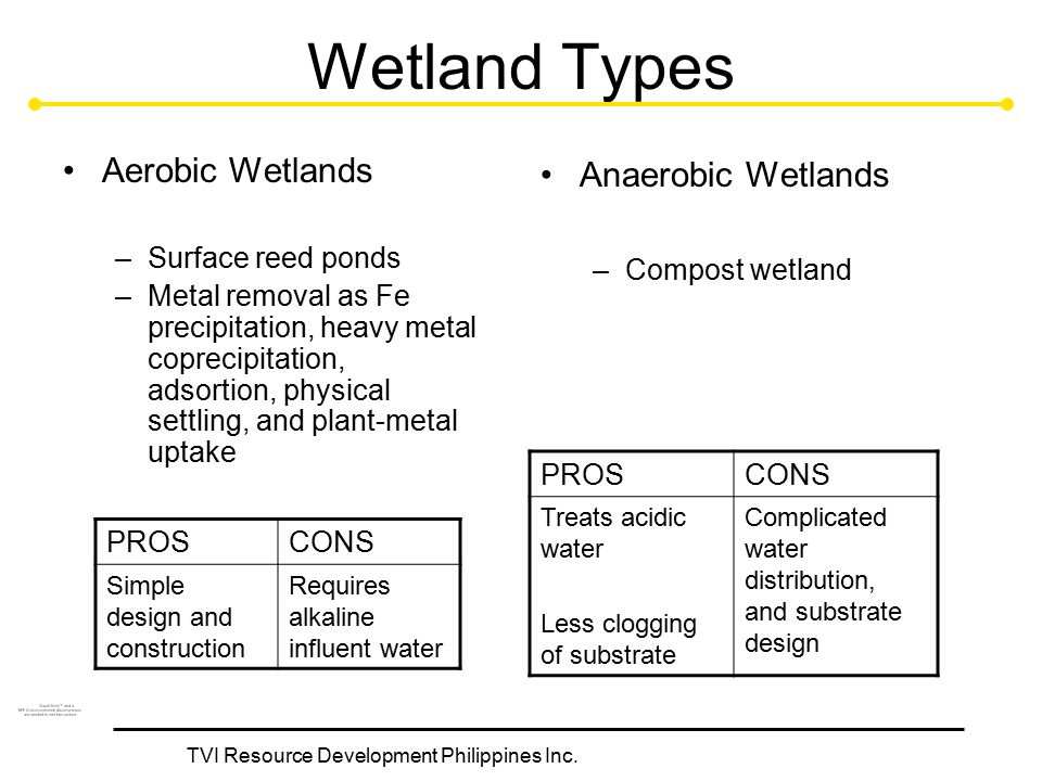 TVI Resource Development Philippines Inc. Anaerobic Wetlands –Compost wetland Wetland Types Aerobic Wetlands –Surface reed ponds –Metal removal as Fe