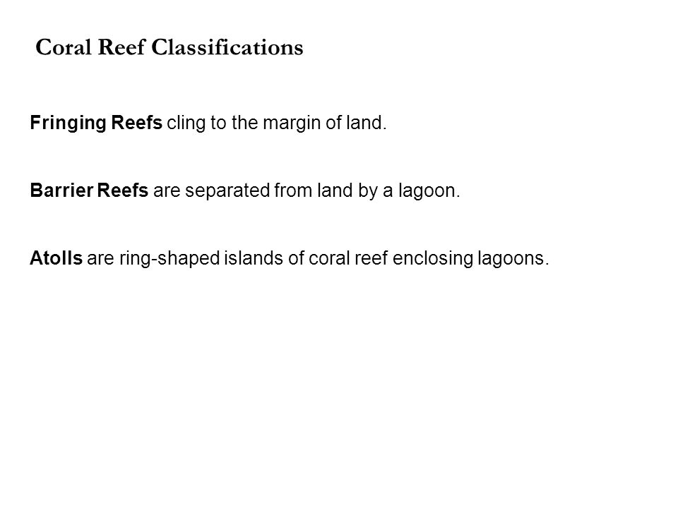 Coral Reef Classifications Fringing Reefs cling to the margin of land.