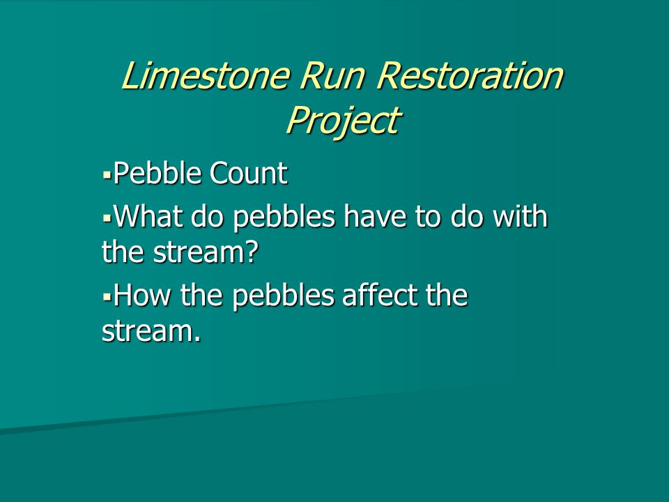 Limestone Run Restoration Project  Pebble Count  What do pebbles have to do with the stream.