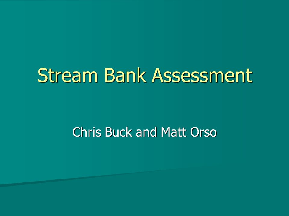 Stream Bank Assessment Chris Buck and Matt Orso