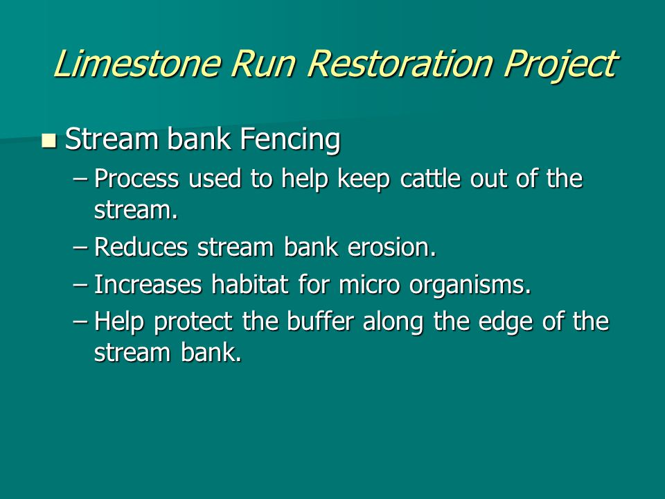 Limestone Run Restoration Project Stream bank Fencing Stream bank Fencing –Process used to help keep cattle out of the stream.