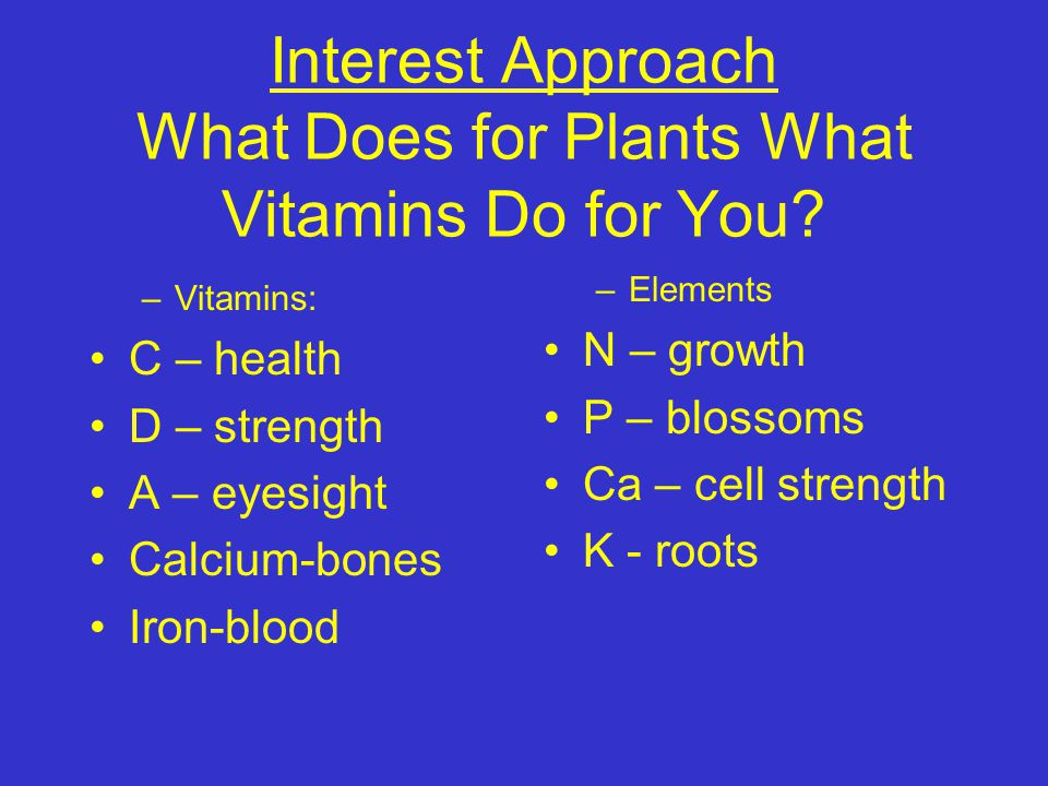 Interest Approach What Does for Plants What Vitamins Do for You.