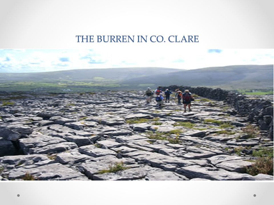 THE BURREN IN CO. CLARE