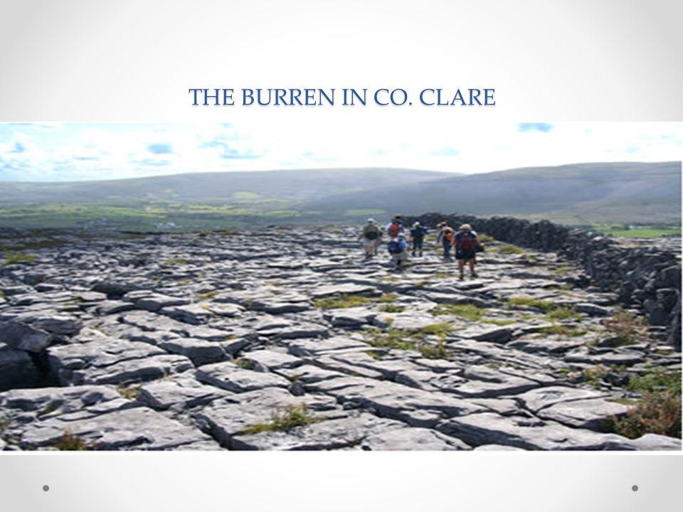 THE BURREN IN CO. CLARE