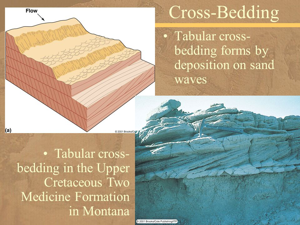 Tabular cross- bedding forms by deposition on sand waves Cross-Bedding Tabular cross- bedding in the Upper Cretaceous Two Medicine Formation in Montana