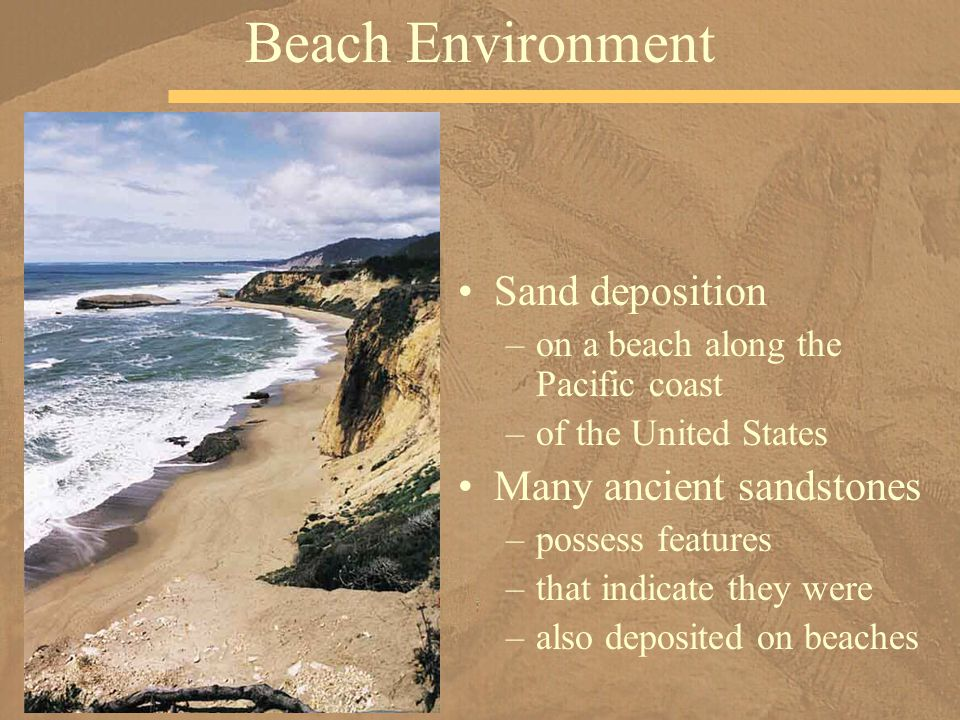 Sand deposition –on a beach along the Pacific coast –of the United States Many ancient sandstones –possess features –that indicate they were –also deposited on beaches Beach Environment