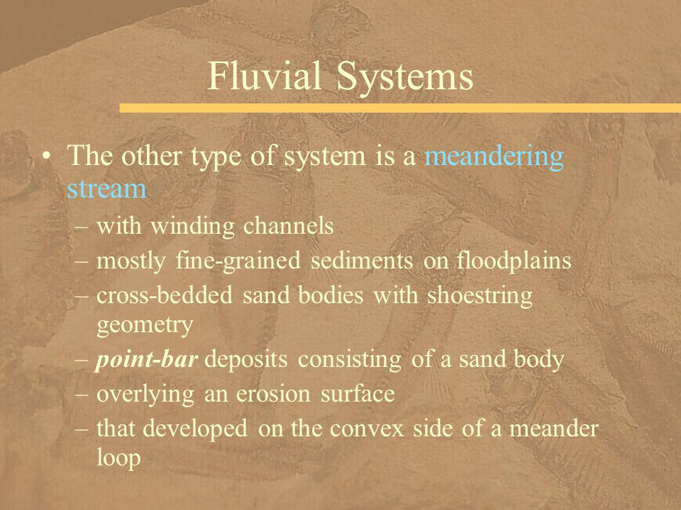 The other type of system is a meandering stream –with winding channels –mostly fine-grained sediments on floodplains –cross-bedded sand bodies with shoestring geometry –point-bar deposits consisting of a sand body –overlying an erosion surface –that developed on the convex side of a meander loop Fluvial Systems