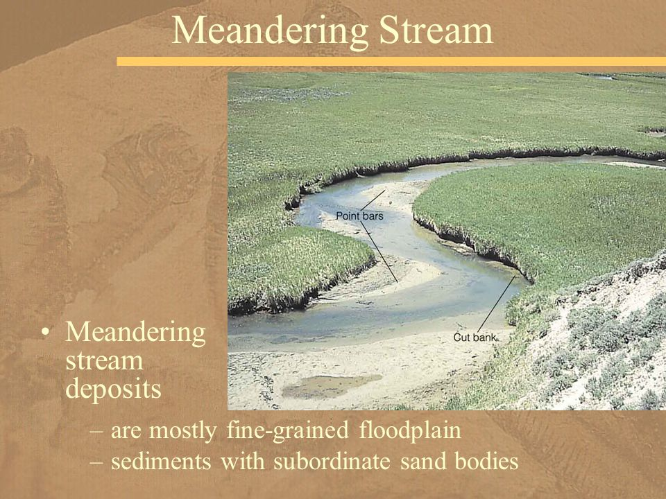 Meandering stream deposits Meandering Stream –are mostly fine-grained floodplain –sediments with subordinate sand bodies