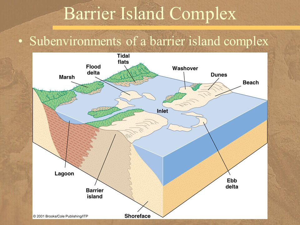 Subenvironments of a barrier island complex Barrier Island Complex