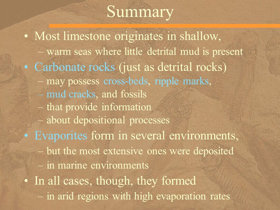 Summary Most limestone originates in shallow, –warm seas where little detrital mud is present Carbonate rocks (just as detrital rocks) –may possess cross-beds, ripple marks, –mud cracks, and fossils –that provide information –about depositional processes Evaporites form in several environments, –but the most extensive ones were deposited –in marine environments In all cases, though, they formed –in arid regions with high evaporation rates