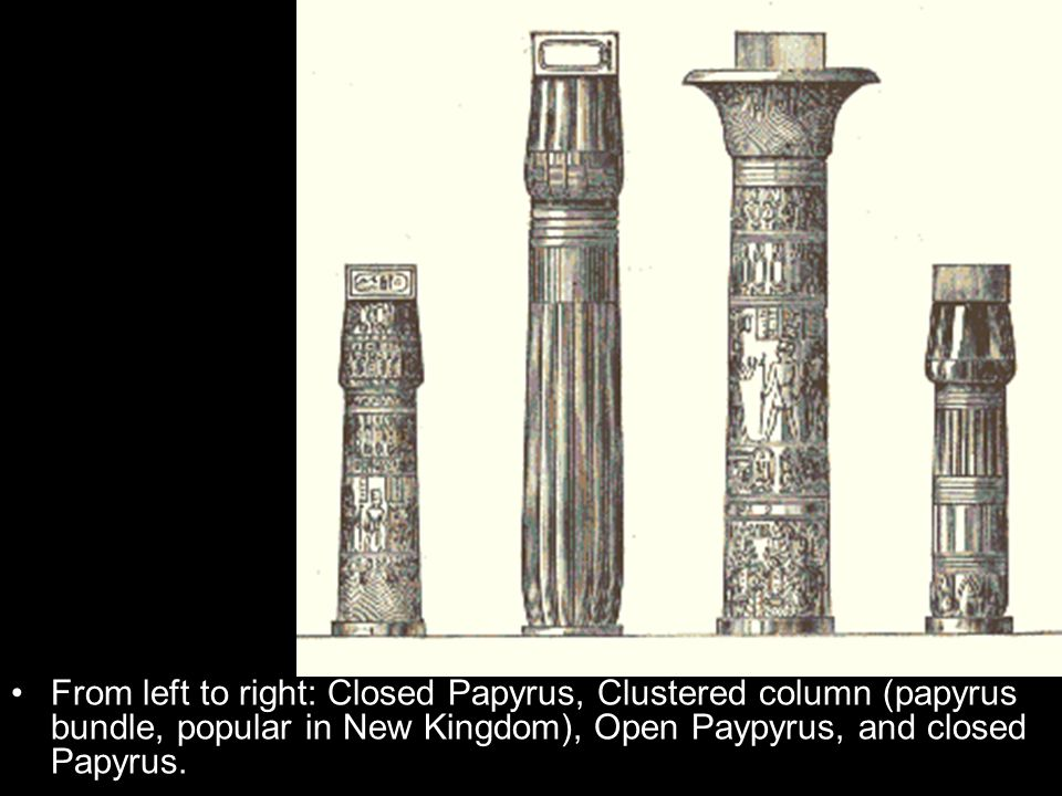 From left to right: Closed Papyrus, Clustered column (papyrus bundle, popular in New Kingdom), Open Paypyrus, and closed Papyrus.