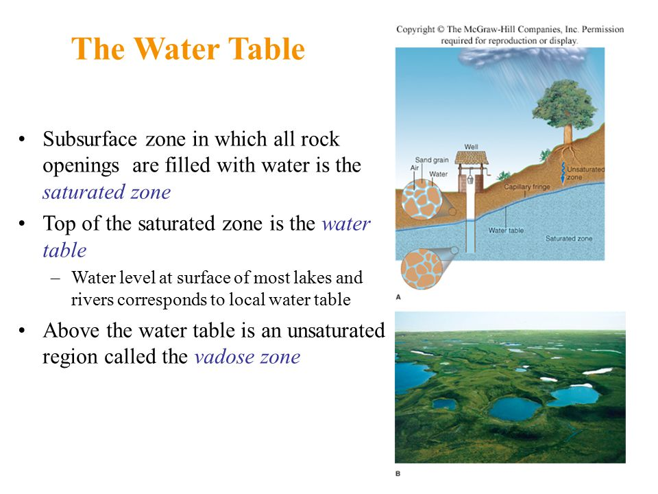 The Water Table Subsurface zone in which all rock openings are filled with water is the saturated zone Top of the saturated zone is the water table –Water level at surface of most lakes and rivers corresponds to local water table Above the water table is an unsaturated region called the vadose zone