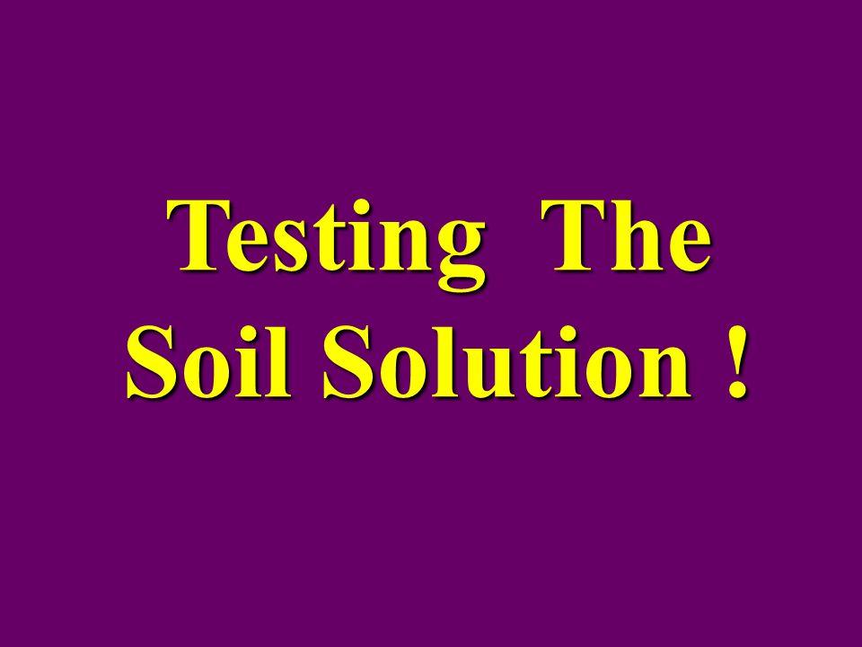 Testing The Soil Solution !