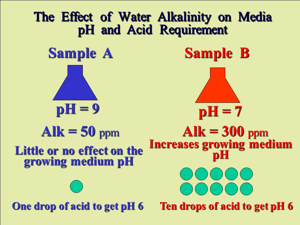 Sample A Sample B pH = 9 pH = 7 One drop of acid to get pH 6 Ten drops of acid to get pH 6 The Effect of Water Alkalinity on Media pH and Acid Requirement Little or no effect on the growing medium pH Increases growing medium pH Alk = 50 ppm Alk = 300 ppm