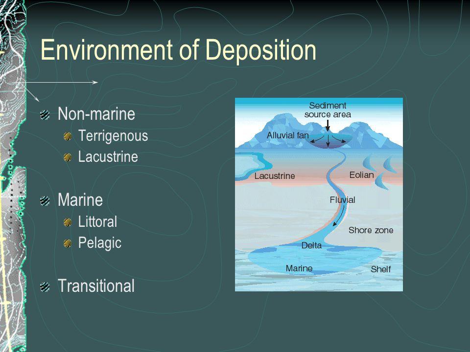 Non-marine Terrigenous Lacustrine Marine Littoral Pelagic Transitional