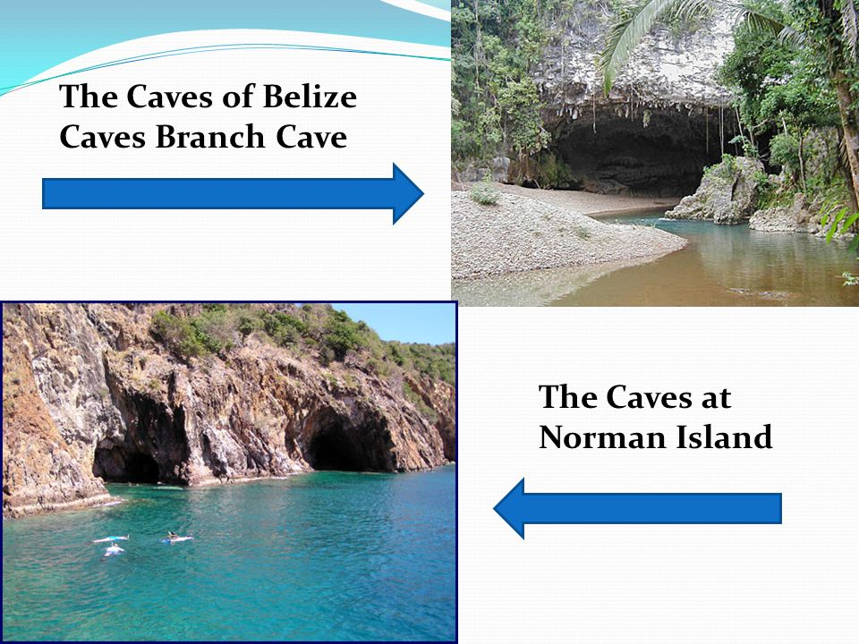 The Caves of Belize Caves Branch Cave The Caves at Norman Island