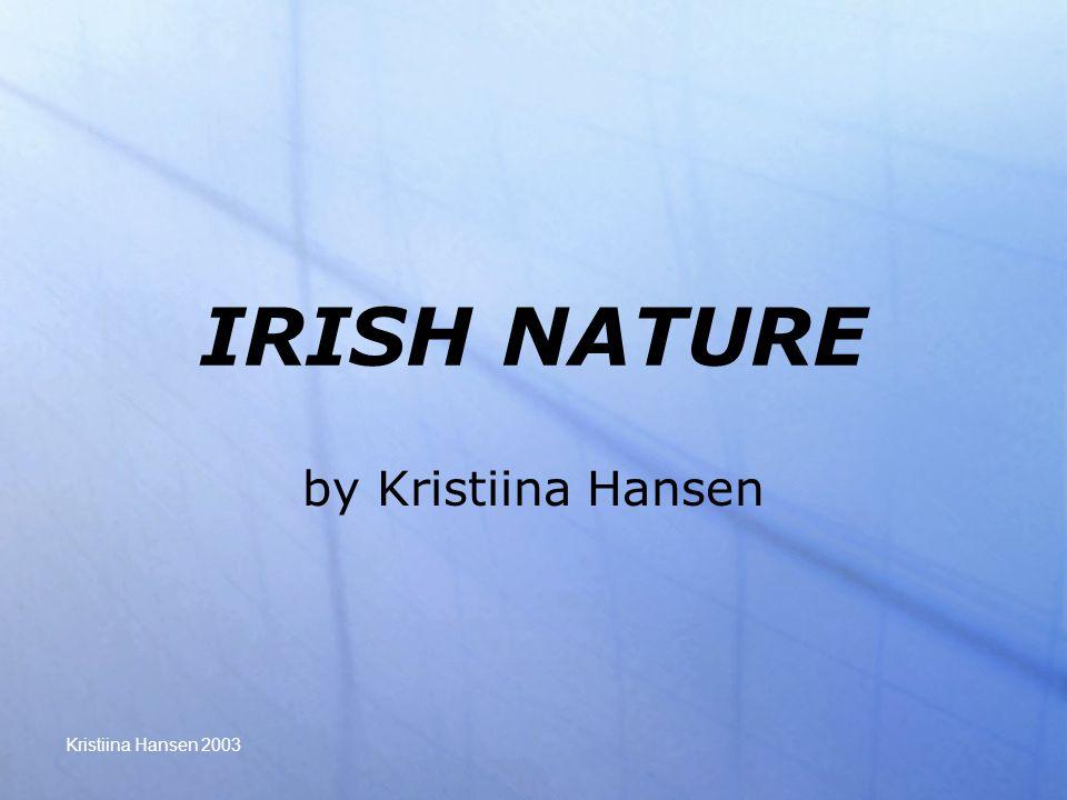 Kristiina Hansen 2003 IRISH NATURE by Kristiina Hansen