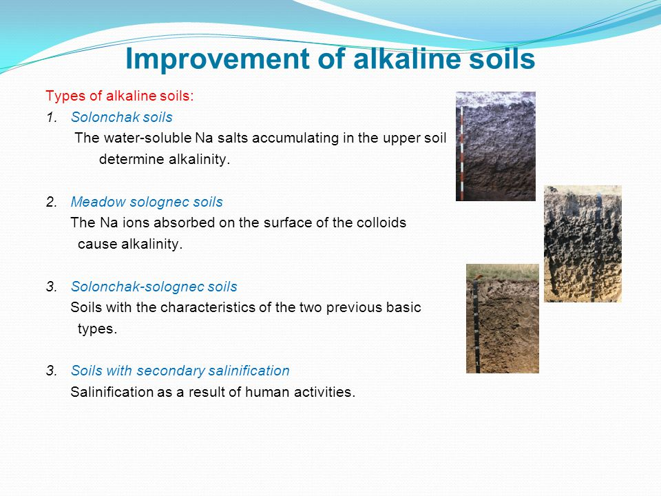 The mechanical, chemical and biological improvement of sandy soils might be necessary.