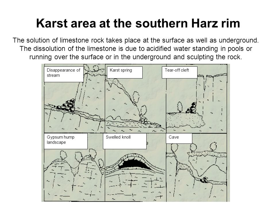 Karst area at the southern Harz rim The solution of limestone rock takes place at the surface as well as underground.
