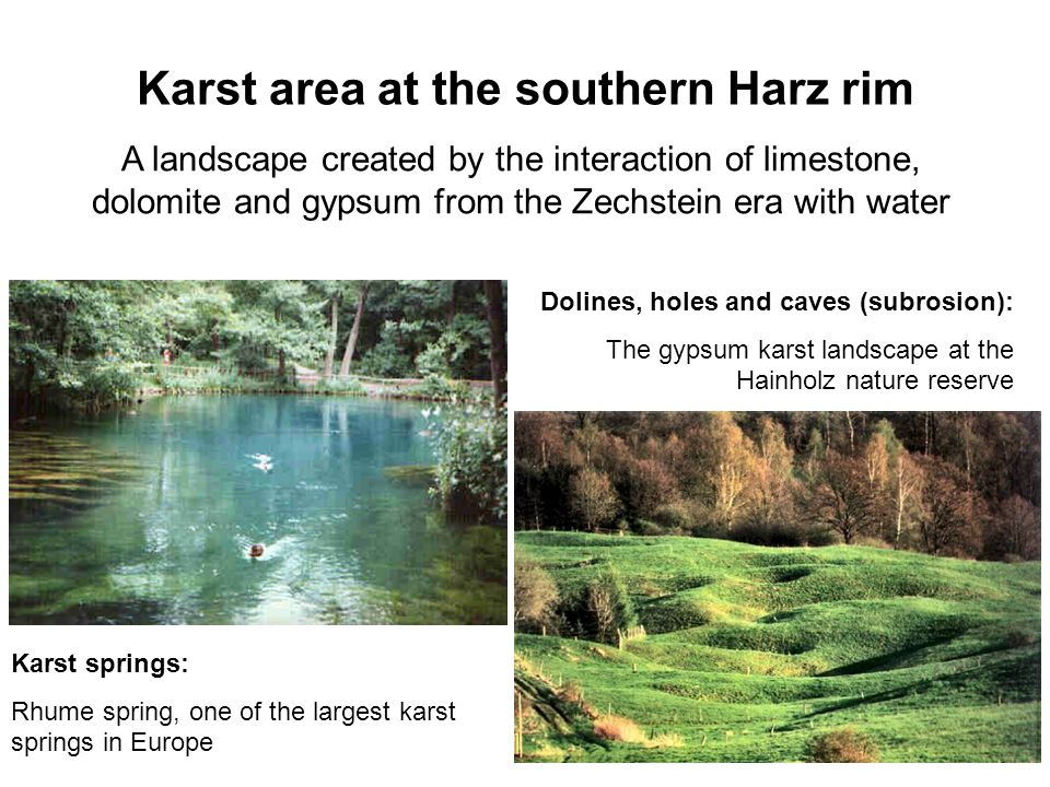Karst area at the southern Harz rim A landscape created by the interaction of limestone, dolomite and gypsum from the Zechstein era with water Karst springs: Rhume spring, one of the largest karst springs in Europe Dolines, holes and caves (subrosion): The gypsum karst landscape at the Hainholz nature reserve