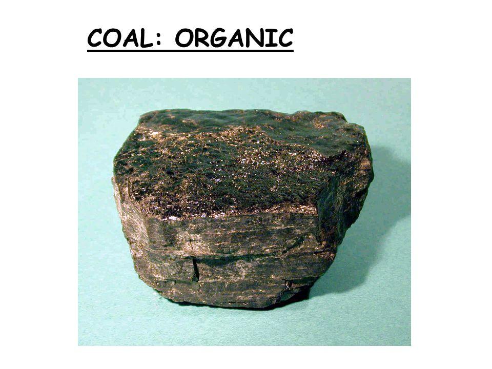 COAL: ORGANIC