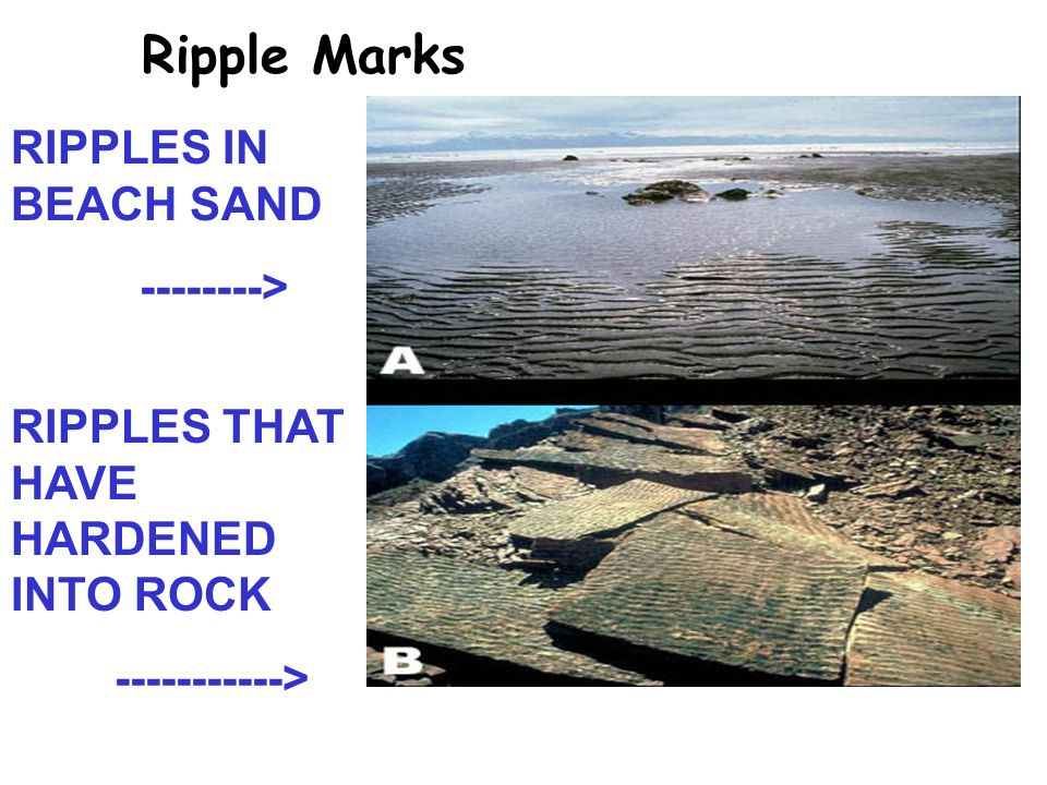 Ripple Marks RIPPLES IN BEACH SAND --------> RIPPLES THAT HAVE HARDENED INTO ROCK ----------->