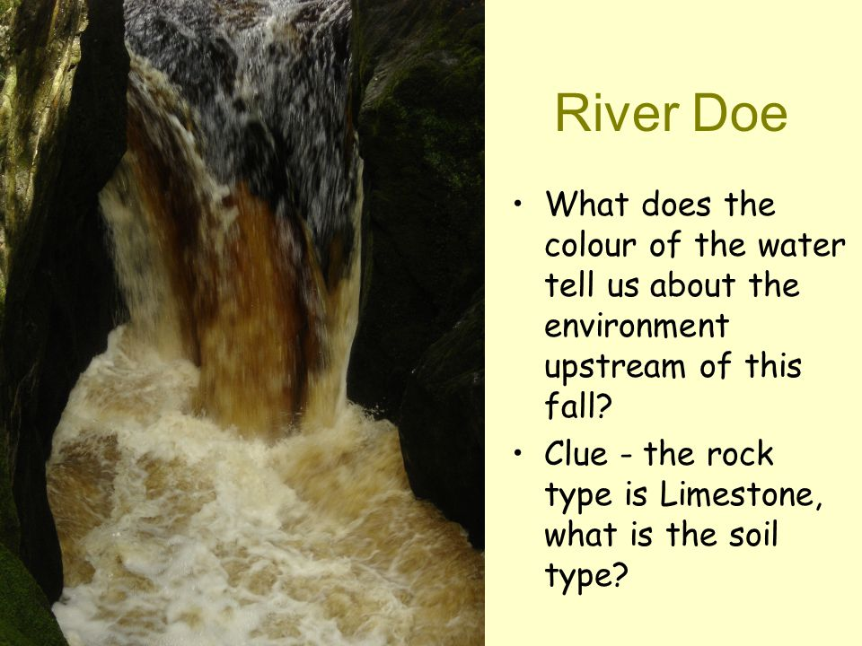 Describe the environment Vegetation density Vegetation type Relief = height and shape of the land Cross- section Geology