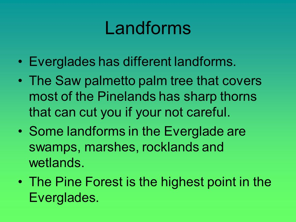 Landforms Everglades has different landforms.