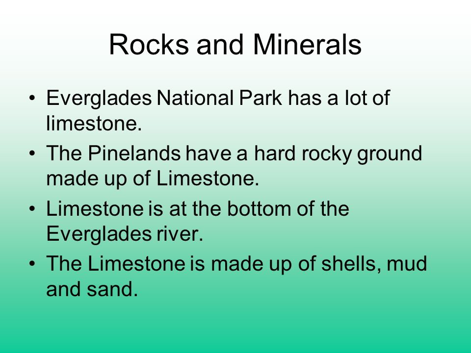Rocks and Minerals Everglades National Park has a lot of limestone. The Pinelands have a hard rocky ground made up of Limestone. Limestone is at the b