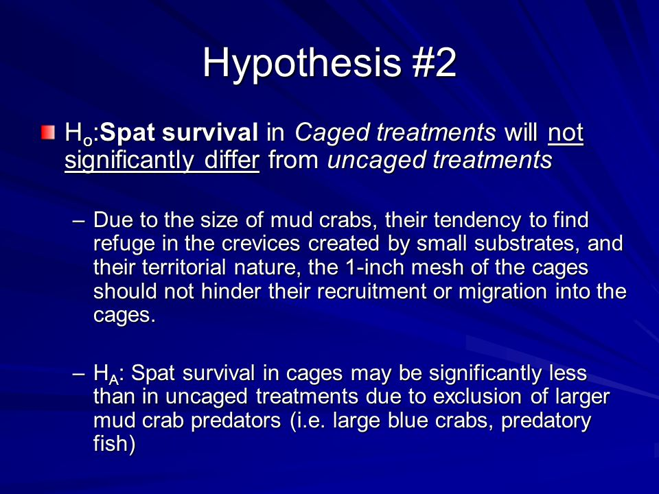 Hypothesis #2 H o :Spat survival in Caged treatments will not significantly differ from uncaged treatments –Due to the size of mud crabs, their tendency to find refuge in the crevices created by small substrates, and their territorial nature, the 1-inch mesh of the cages should not hinder their recruitment or migration into the cages.