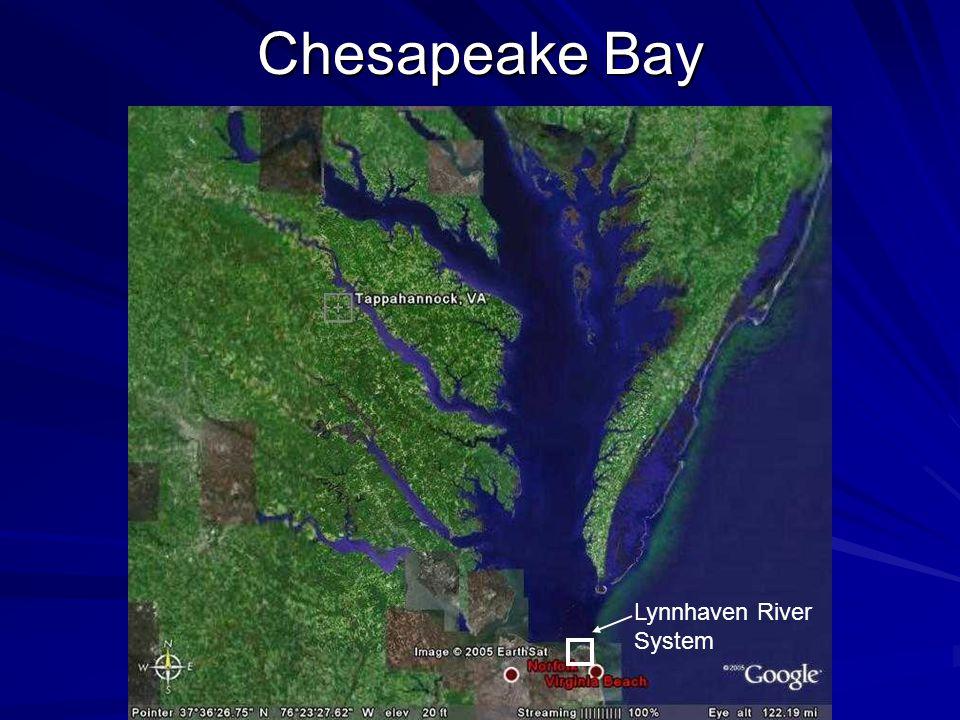 Chesapeake Bay Lynnhaven River System